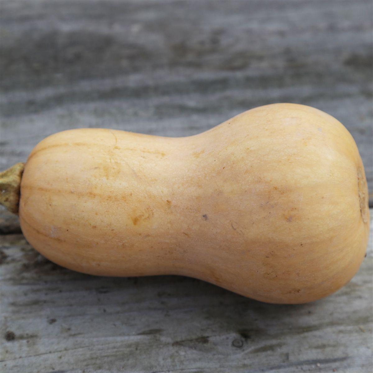 Butternut Bio 800 gr, (3,63€/Kg)